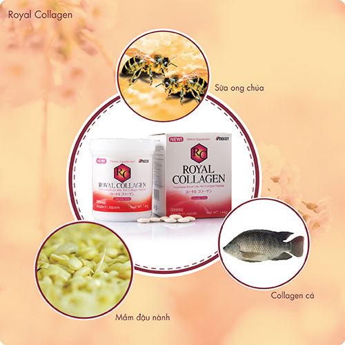 Royal collagen 3in1