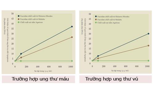 thi-nghiem-1-fucoidan